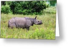 Asian Rhinoceros Greeting Card