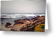 Asilomar Beach Pacific Grove Ca Usa Greeting Card