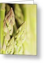Asparagus Spears Macro Greeting Card