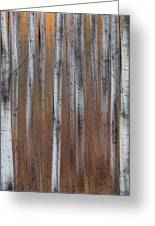 Aspen Abstract Vertical Greeting Card