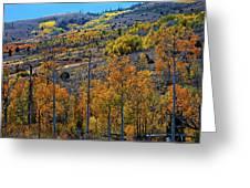 Aspen Cascades In The Sierra Greeting Card