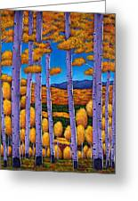 Aspen Country II Greeting Card by Johnathan Harris