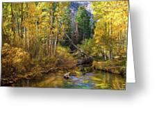 Aspen Dream Greeting Card