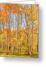 Aspen Fall Foliage Vertical Image Greeting Card