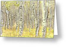 Aspen Forest 2 - Photo Painting Greeting Card