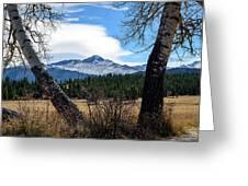 Aspen Frame Fall Greeting Card