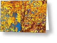 Aspen Glow Autumn Sky Greeting Card