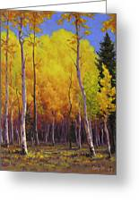 Aspen Glow Greeting Card