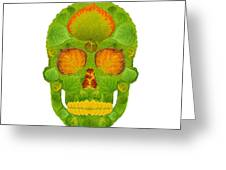 Aspen Leaf Skull 10 Greeting Card