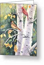 Aspen Light Greeting Card by Patricia Pushaw