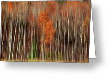 Aspen Motion II, Sturgeon Bay Greeting Card