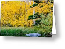 Aspen Pond Greeting Card