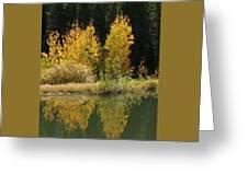 Aspen Pond Riv M 32 Greeting Card