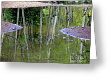 Aspen Reflections Greeting Card