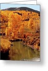 Aspen Stream Greeting Card