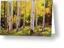 Aspen Symphony Greeting Card by Gary Kim