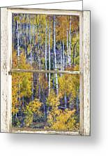Aspen Tree Magic Cottonwood Pass White Farm House Window Art Greeting Card