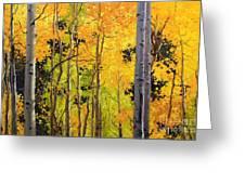 Aspen Trees Greeting Card