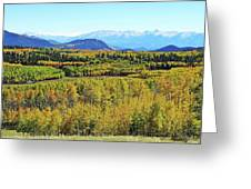 Aspen Valley Greeting Card