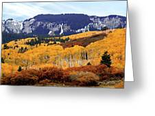 Aspen Vista Greeting Card