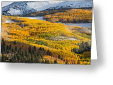 Aspens And Mountains In The Morning Light Greeting Card