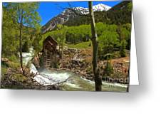 Aspens Around The Crystal Mill Greeting Card