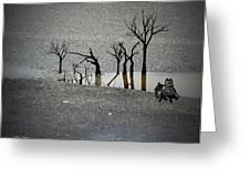 Asphalt Oasis Greeting Card by Sabine Stetson
