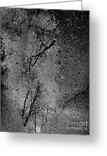 Asphalt-water-tree Abstract Refection 03 Greeting Card