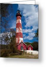 Assateague Lighthouse Greeting Card