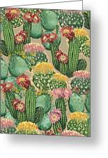 Assorted Blooming Cactus Plants Greeting Card