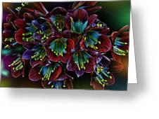 Assortment Of Splendor Greeting Card
