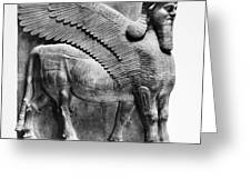 Assyria: Bull Scultpure Greeting Card