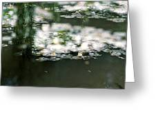 At Claude Monet's Water Garden 5 Greeting Card