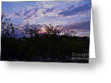 At First Light Greeting Card