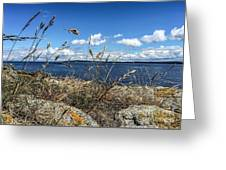 At Point Lawrence Greeting Card