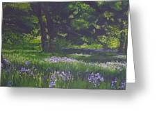 At The Edge Of The Forest  Greeting Card