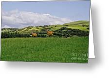 At The Hill Bottom. Greeting Card