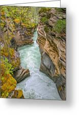 Athabasca River Canyon Greeting Card