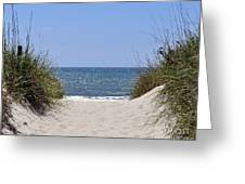 Atlantic Access Greeting Card by Al Powell Photography USA