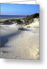 Atlantic Ocean Sand Dunes Greeting Card