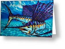 Atlantic Sailfish Greeting Card