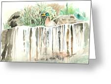 Atop The Waterfall Greeting Card