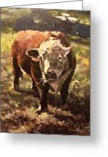 Atsa Lotta Bull Greeting Card