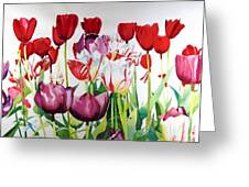 Attention Greeting Card by Elizabeth Carr