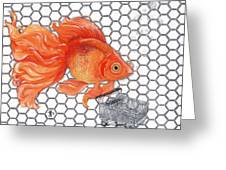 Attention Goldfish Shoppers Greeting Card