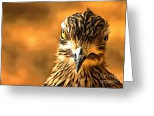 Attitude...with Feathers Greeting Card