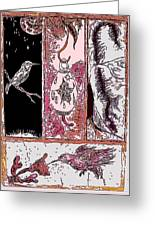 Attracting The Hummingbird Greeting Card