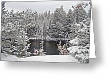 Au Sable River Overlook Greeting Card