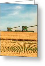 Augers Out Greeting Card