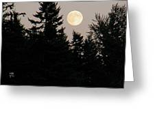 August Full Moon - 1 Greeting Card
